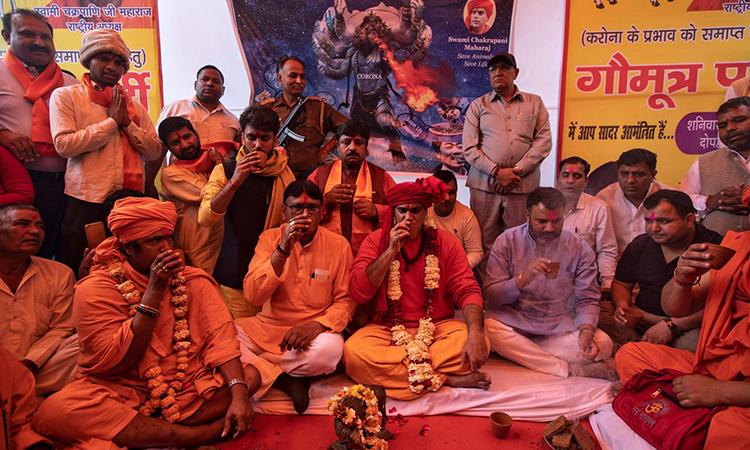 Các tín đồ Hindu giáo tham dự tiệc uống nước tiểu bò ở New Delhi, Ấn Độ ngày 14/3. Ảnh: Reuters.