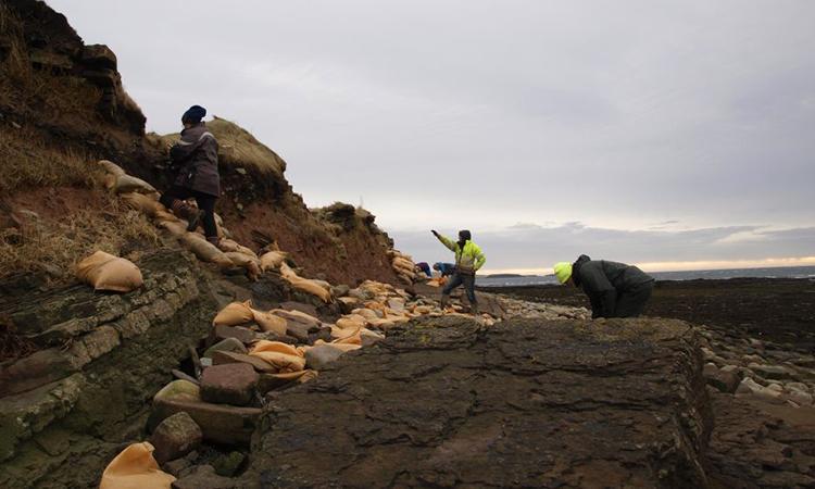 Các tình nguyện viên sử dụng bao cát để ngăn sóng biển ăn mòn các vách đá chứa hài cốt. Ảnh: Live Science.