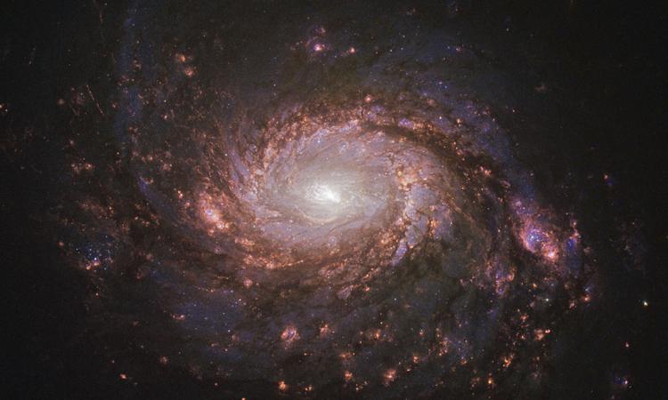 Ảnh chụp thiên hà M77 của kính viễn vọng không gian Hubble. Ảnh: NASA.