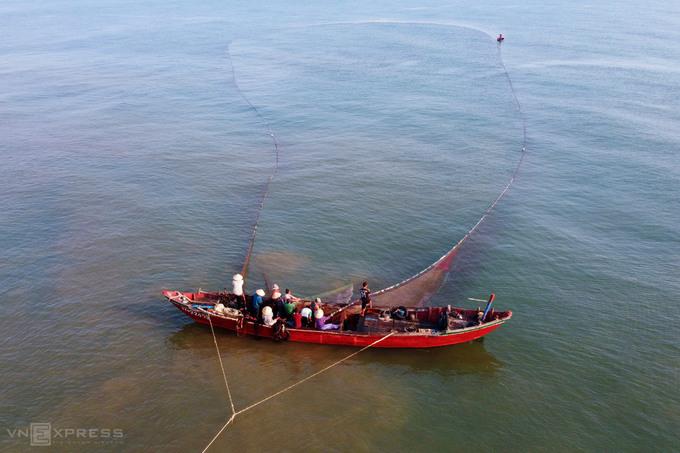 Ngư dân được mùa ruốc biển