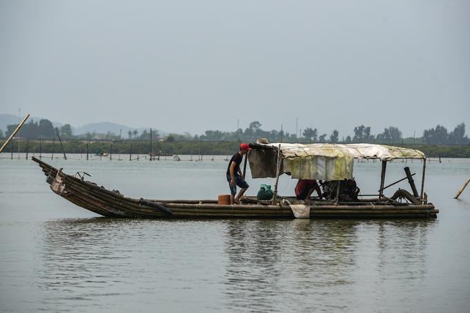 Săn vẹm xanh dưới đáy sông Yên