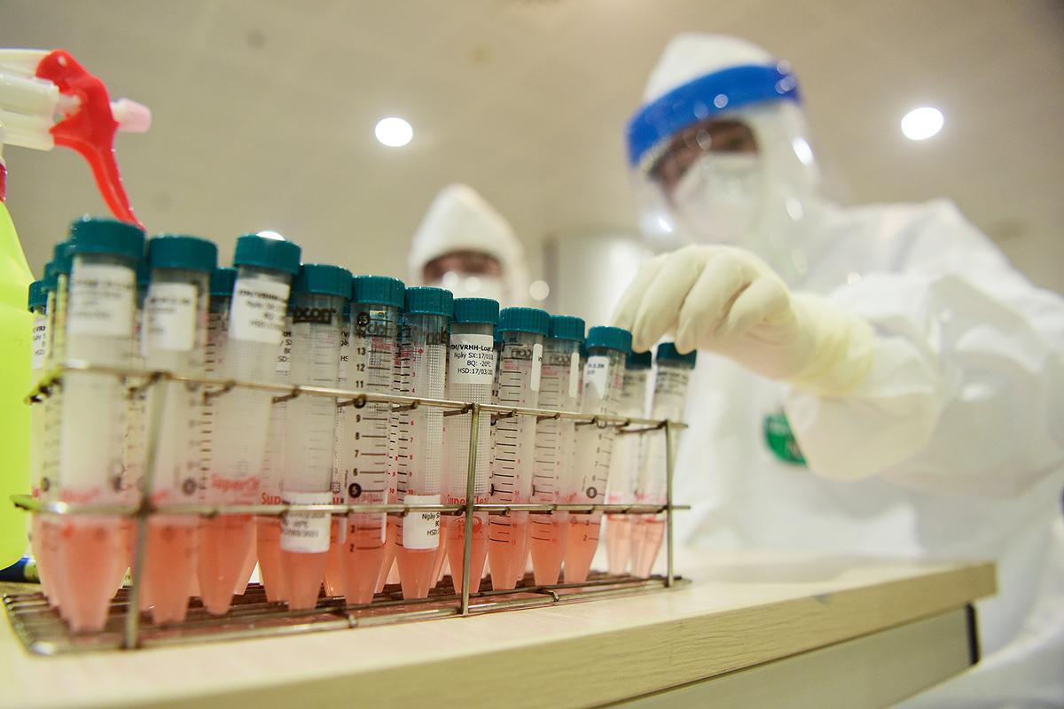 Mẫu xét nghiệm tại Bệnh viện Nhiệt đới Trung ương cơ sở 2. Ảnh: Giang Huy.