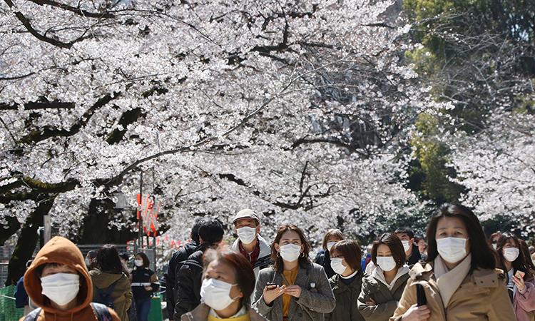 Người dân Tokyo đi ngắm hoa anh đào tại công viên Ueno hôm 24/3. Ảnh:AP.