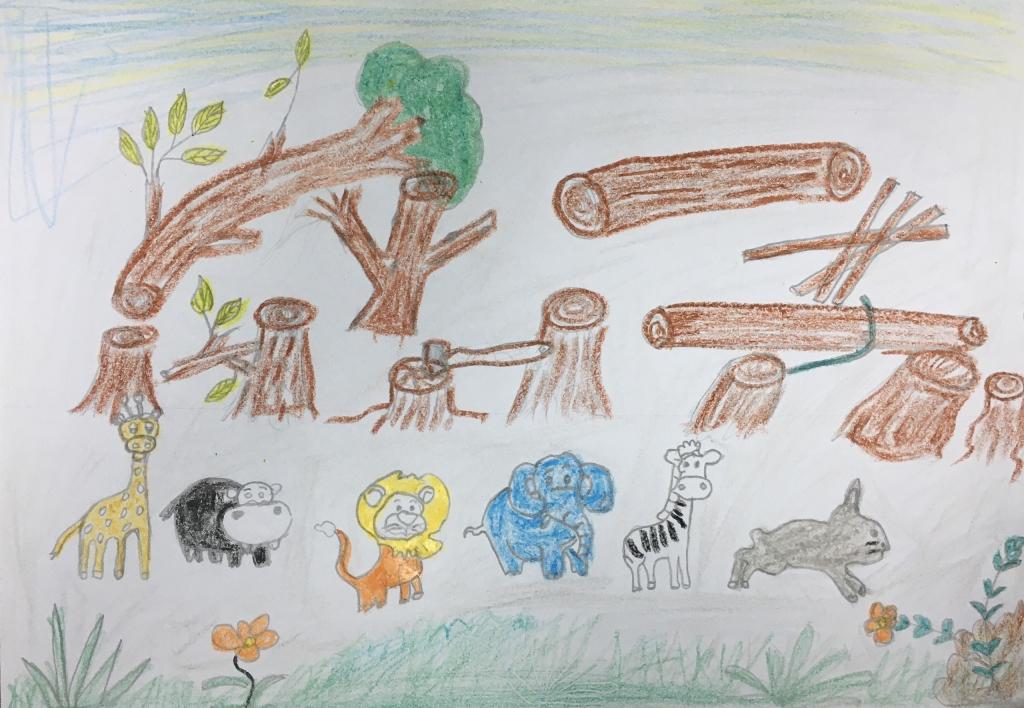 Bảo vệ rừng xanh